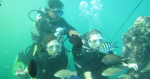 Intro Scuba Diving Tanjung Benoa Bali