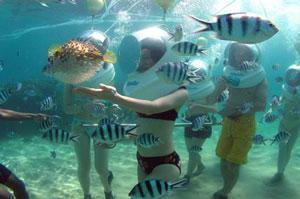 Bali Seawalker1 Bali Seawalker Tanjung Benoa