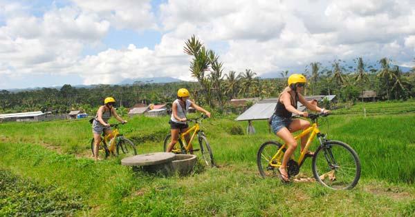 Alam Cycling Ubud
