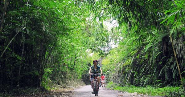 Bali Bike Tours Rute Kintamani Ubud