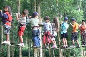 Bali Treetop Bedugul