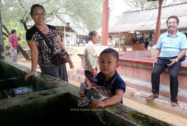 Liburan Ke Pulau Penyu Tanjung Benoa