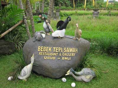 Bebek Tepi Sawah