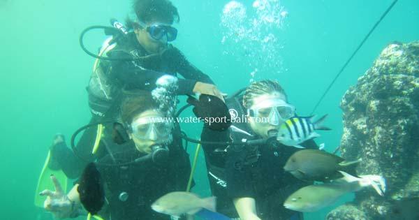Intro Scuba Dive Tanjung Benoa Bali