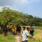 trekking bali 2
