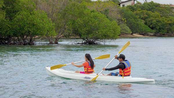 Aktivitas Kayaking Bali Barat