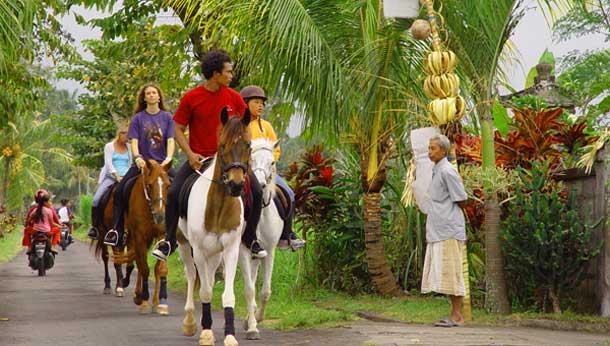 Naik Kuda Di Bali
