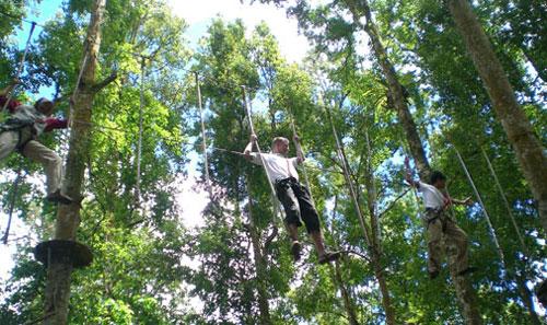 bali treetop 16