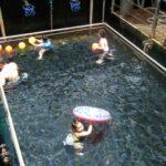 quicksilver cruise tour bali activities