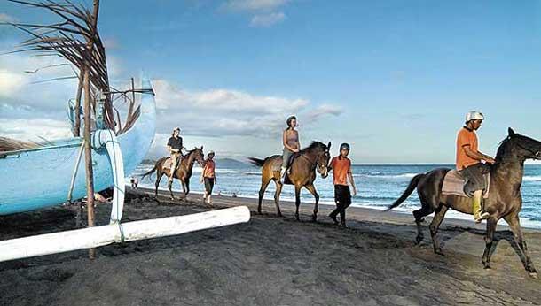 wisata naik kuda di pantai Bali