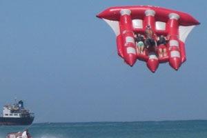 Bali Flying Fish