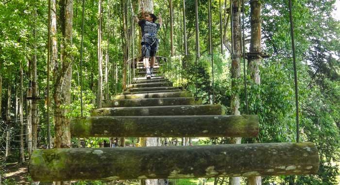 Bali treetop adventure Bedugul