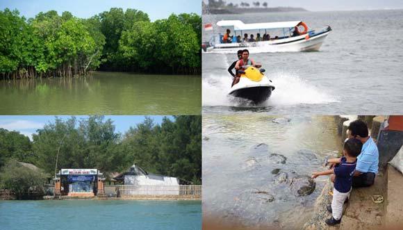 Paket Mangrove Forest Pulau Penyu Tour Dengan Jet Ski