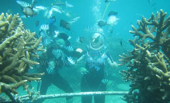 Dive Walker Labuan Amuk Bali