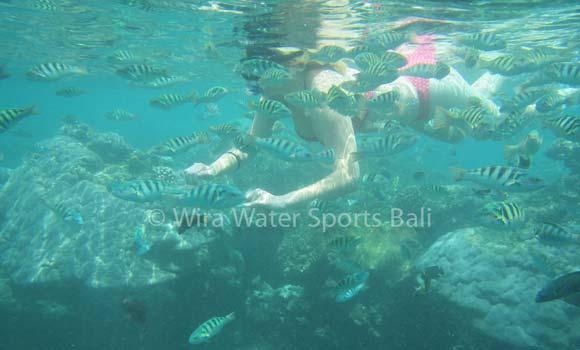 Amuk Bay Snorkeling Bali