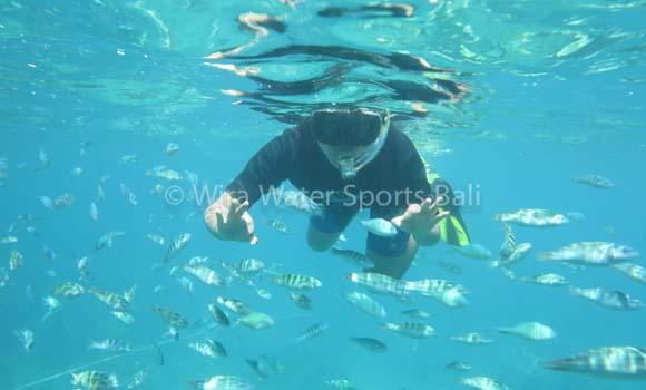 Snorkeling Labuhan Amuk