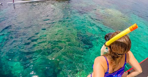 Aktivitas Snorkeling Nusa Lembongan