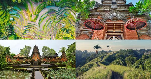 8 Tempat Wisata Gratis Di Ubud Bali