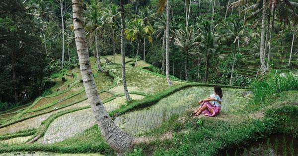 Daya Tarik Pariwisata Ubud Bali
