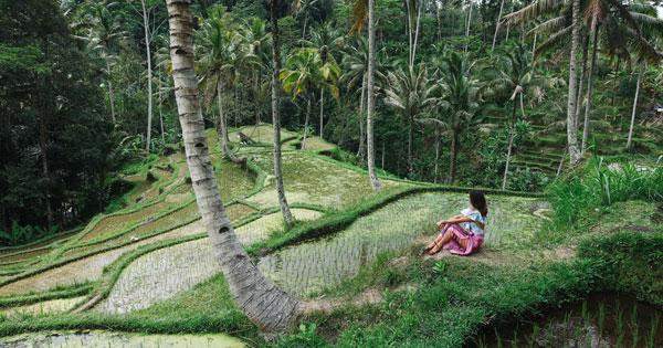 Suasana Liburan Di Bali