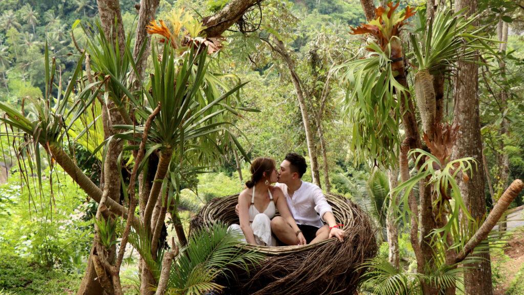 Sarang Burung Ukuran Besar Harga Bali Swing Bongkasa