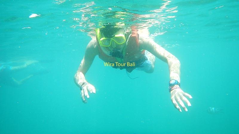Snorkeling Di Pantai Tanjung Benoa