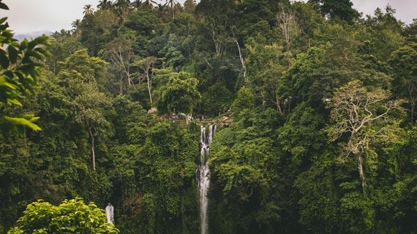 Air Terjun Sekumpul - 20 tempat wisata untuk dikunjungi Bali